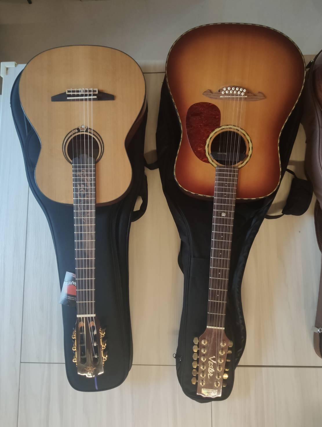 玩膩了的Vester十二絃吉他