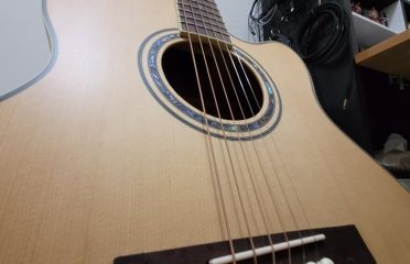LUNA 面單板木吉他